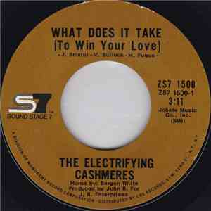 The Electrifying Cashmeres - What Does It Take (To Win Your Love) / Ooh, I Love You mp3 download