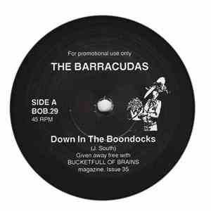 The Barracudas / The Sneetches - Down In The Boondocks / Everybody's Talking mp3 download