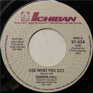 Sandra Hall - Use What You Got mp3 download