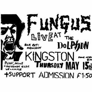 Fungus  - Live At The Dolphin mp3 download