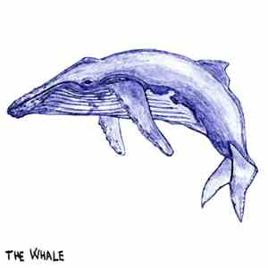 R. Lobster - The Whale mp3 download